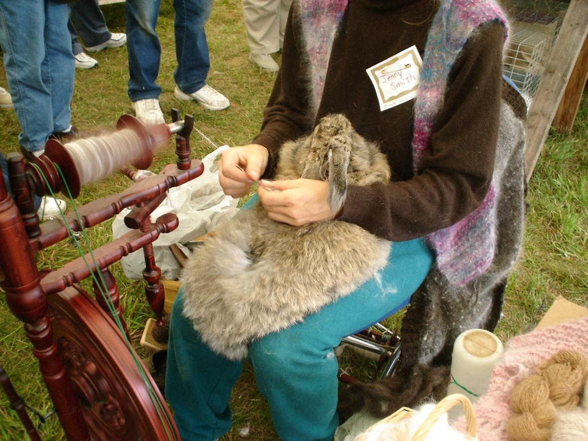 angora rabbit; angora wool; cruelty to animals