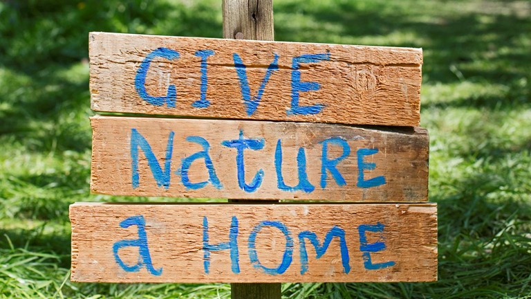 Give Nature a Home