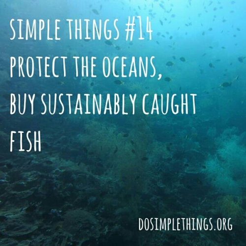 simple thing 14 know what fish not to eat